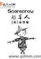 Scarecrow稻草人